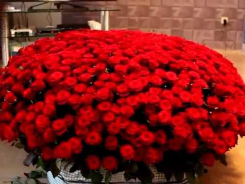 101 персиковая роза цветы и букеты на df. Ua. У нас вы можете купить 101 розу в киеве или в любом другом крупном и маленьком городе украины.