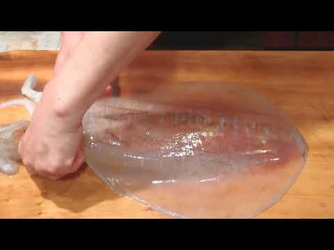 how to cut and clean squid