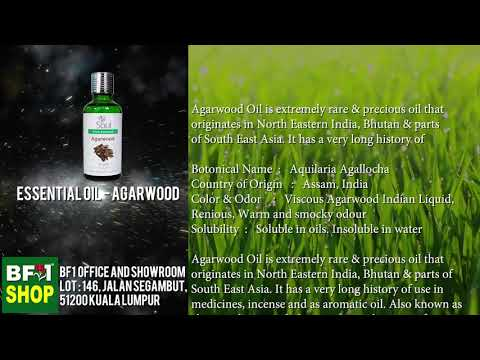 pure-essential-oil---agarwood,-essential-oil-malaysia