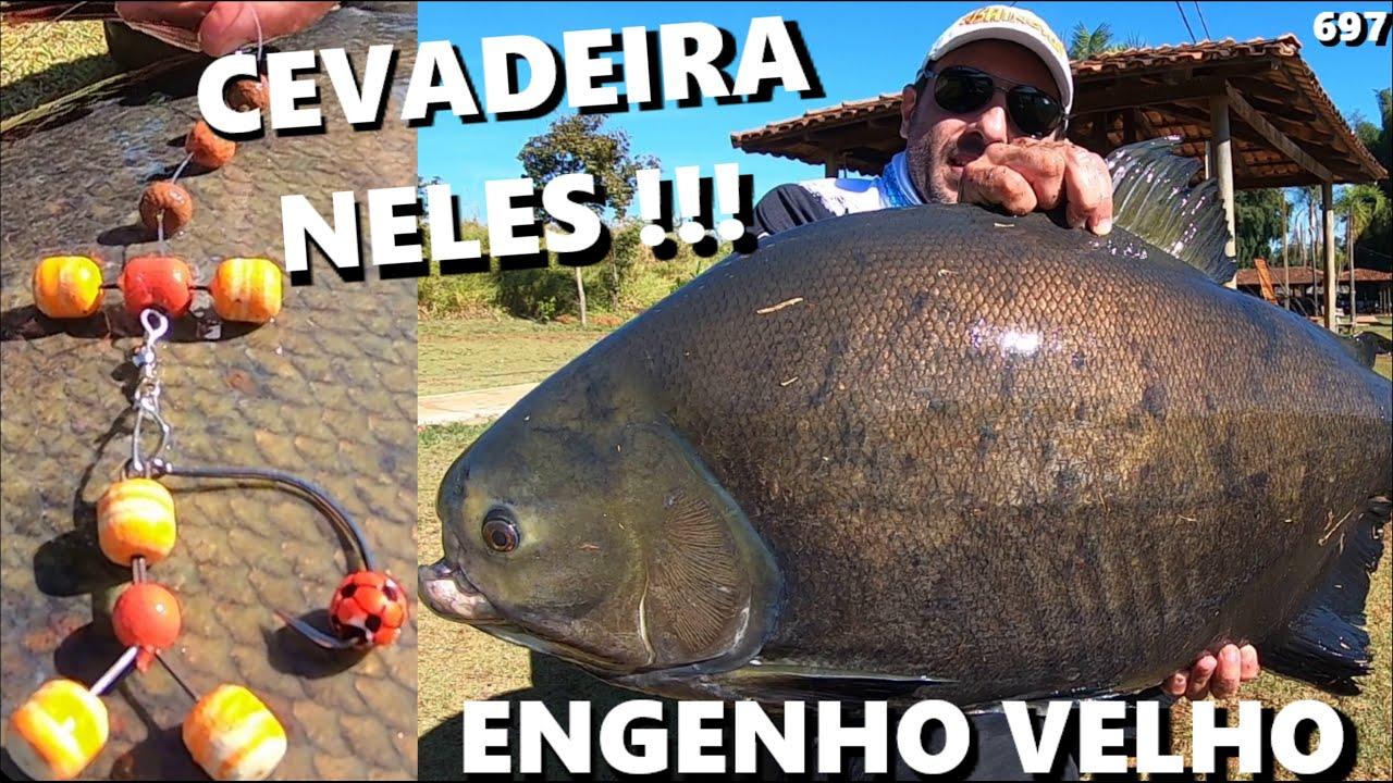Antenas e Robôs no lago principal do ENGENHO VELHO (CEVADEIRA NELES) Fishingtur #697