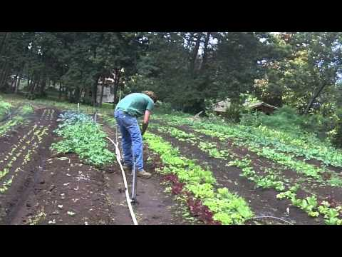 Hawaii: Maui's O'o Farms: Farm-to-Table & Organic Agriculture & Living