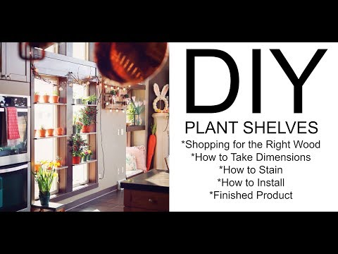 DIY | How to Make Your Own Plant Shelves | Home Improvement | Home Ideas