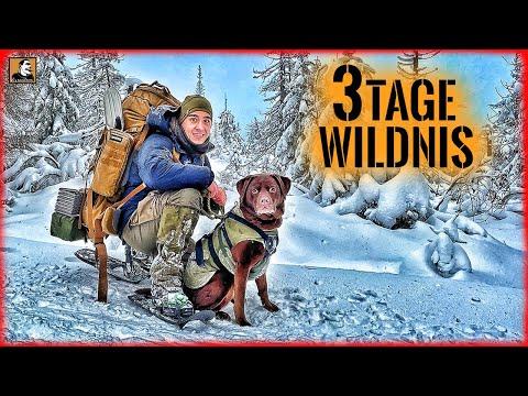 3 TAGE Wildnis im SCHNEE mit HUND - BIWAK im WINTER | Survival Mattin