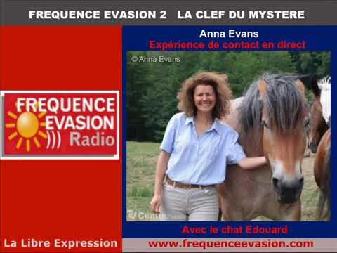 Communication Intuitive à La Radio: En Direct Avec Le Chat EDOUARD