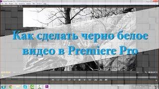 Как сделать черно белое видео в Premiere Pro
