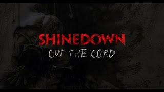 shinedown cut the cord electric guitar cover woriginal solo