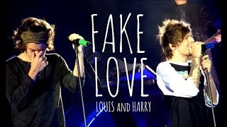 Harry & Louis // FAKE LOVE