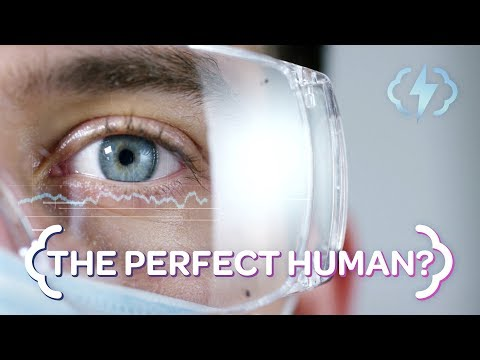 Building the Perfect Human