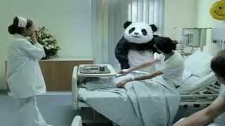 Обложка на видео о [Aion] never say no to panda