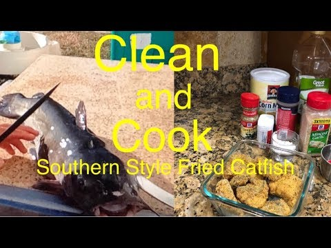 Clean and Cook|How to cook Southern Style  Fried Catfish
