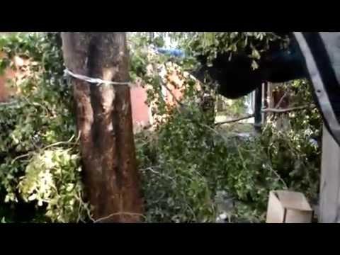 VIDEO 1 HURRICANE GONZALO DAMAGE PHILIPSBURG ST MAARTEN