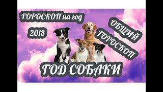 видео В чем встречать 2018 год Собаки по знакам Зодиака