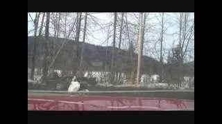 TMG Ent Video 2 part 2