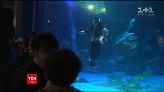 Санта Клауси під водою: у Південній Кореї влаштували різдвяне шоу для відвідувачів акваріуму