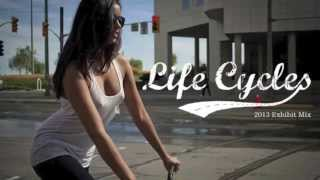 LifeCycles Mix 2013
