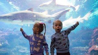 Gaby and Alex visiting Aquariu…