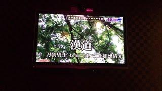 刀剣男士 team三条 with加州清光 - 漢道