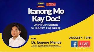 (August 4, 2020) Itanong Mo Kay Doc: Online Consultation sa Backyard Hog Raising