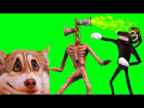 СИРЕНОГОЛОВЫЙ ПРОТИВ CARTOON DOG!! СПАСАЕМ КАРОЛИНУ!! (Хаски Бублик) Говорящая собака