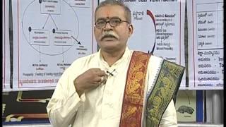 Human Values and Professional Ethics, Class1 - Marella Madhava rao