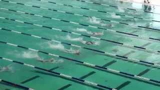 2014-15新界區小學界游泳比賽女甲50自由式決賽