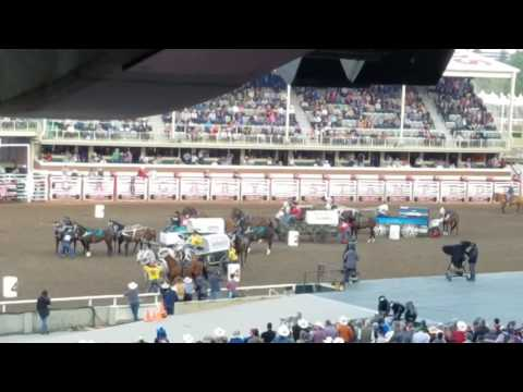 Chuckwagon races 2017 Calgary Stampede
