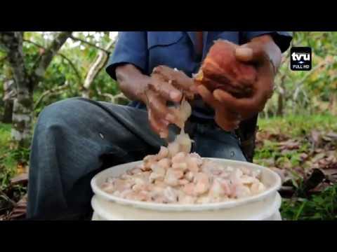 Lutheran World Relief genera oportunidades de desarrollo a micro productores