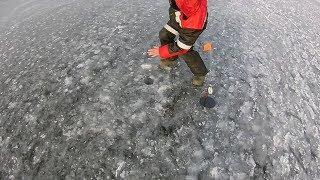 Зимняя Рыбалка Открытие сезона 2019 Озеро Тростенское