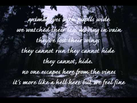 Numb As The Winter - Chelsea Wolfe (lyrics)