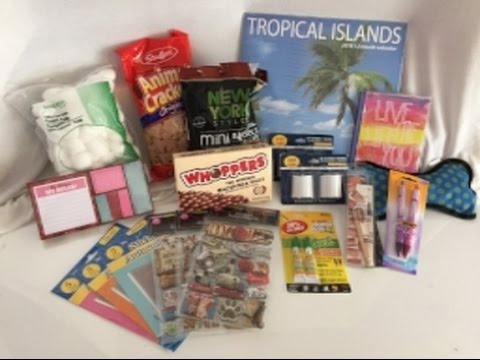 Collective hauls ~ Dollar Tree (3 stores), Goodwill and Family Christian  (it's a long one)
