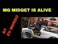 MG MIDGET IS ALIVE