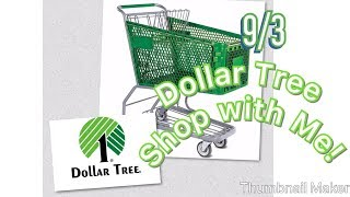9/3-Dollar Tree Come Shop with Me and Look at things! (Recorded 9/2)