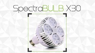 SpectraBULB X30 - Produktový list GreenVisuaLED