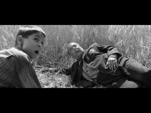残酷すぎて途中退場者が続出した問題作…映画『異端の鳥』予告編
