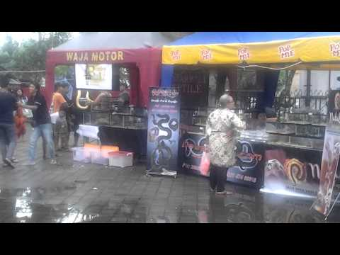 Show&contest bali expo kuliner cup1