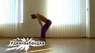 Йога при грыже поясничного отдела позвоночника(Йога при грыже поясничного отдела позвоночника. Помогает йога похудеть. Брахмачари дхирендра йога сукшма..., 2015-12-12T20:36:39.000Z)
