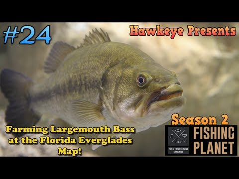 Fishing Planet S2 - Ep. #24: Farming Largemouth Bass at the Florida Everglades Map!