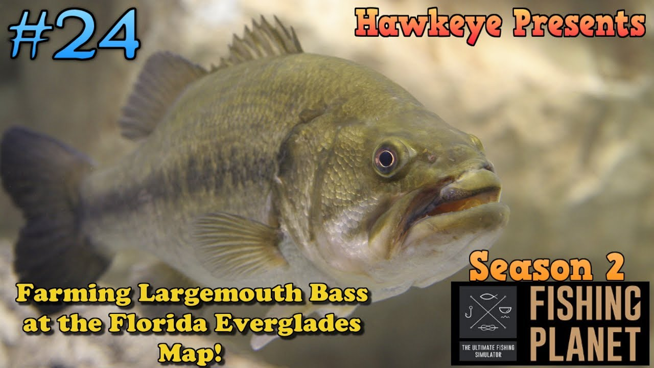 Florida Everglades Map.Fishing Planet S2 Ep 24 Farming Largemouth Bass At The Florida
