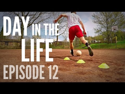 Day in the Life 12: Training and Q+A!