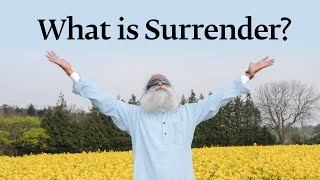 What is Surrender - Sadhguru