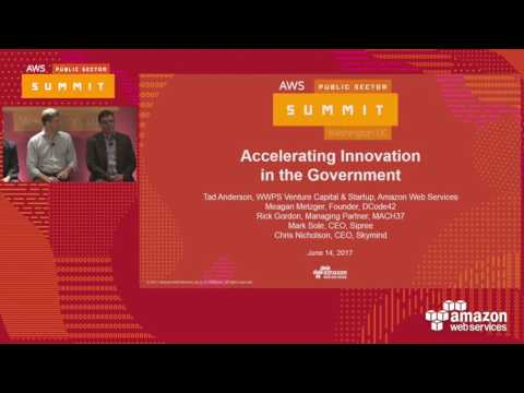 Accelerating Innovation in the Government (119718)