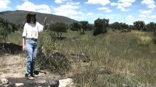 El Linaje de Teotihuacán, TV UNAM.