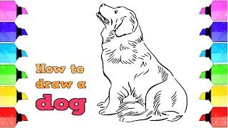 How to draw a dog for kids, step by step [very simple]