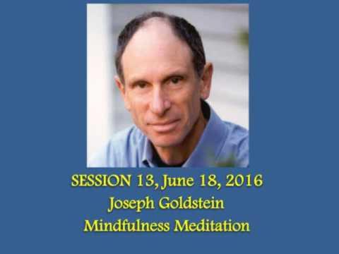 #13 Joseph Goldstein - Mindfulness Meditation