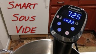Download Mp3 Anmade Smart Sous Vide _ Z Review _ Mukbang For Your Pleasure