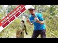 Memikat Burung Kutilang Menggunakan Suara Pikat Anti Zonk  Mp3 - Mp4 Download