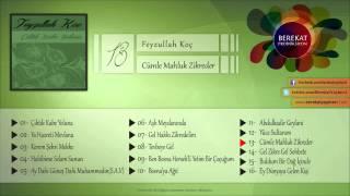 Feyzullah Koç - Cümle Mahluk Zikreder
