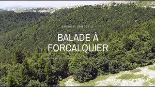 Balade autour de Forcalquier - Terres de France