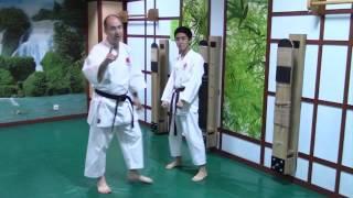 Как правильно наносить боковой проникающий удар ногой - Ёко Гери Кекоми(Из этого ролика Вы узнаете, как правильно наносить боковой проникающий удар ногой, Ёко Гери Кекоми., 2015-12-07T09:33:22.000Z)