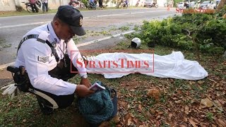 Malacca student on way to school killed by falling branch
